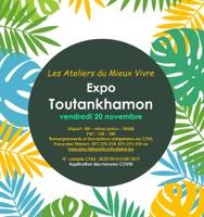 Visite de l'expo Toutankhamon à Liège